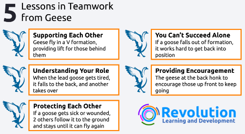 The 5 Teamwork Lessons from Geese
