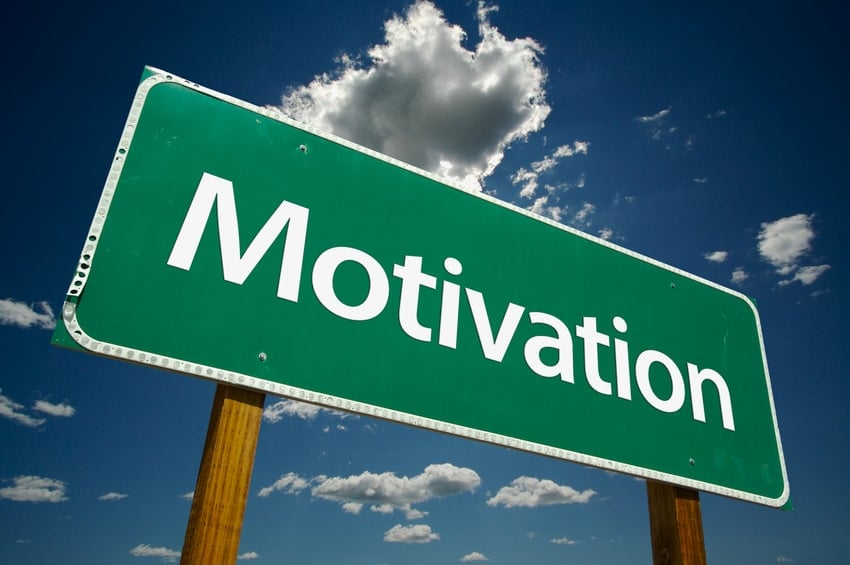Motivating Employees to Learn